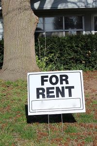 yard sign reading 'for rent' with large tree behind it